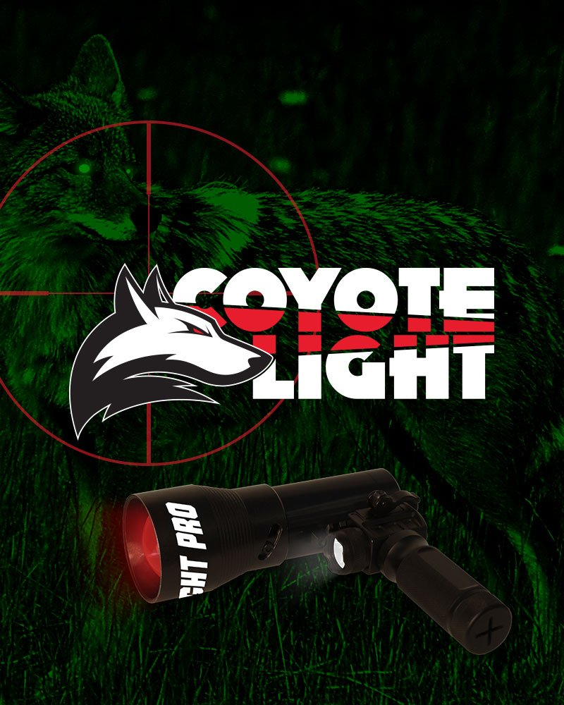 Coyote Light